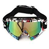 AUDEW Lunettes de Ski Protection Masque de Visage pour Extérieur Activité Moto Cross Google VTT Vélo Snowboard Anti-UV Anti-brouillard Anti-poussière ...