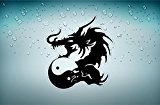Autocollant sticker voiture tuning dragon tribal macbook ying yang macbook r2