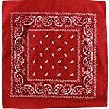 Bandana avec Motif Paisley rouge