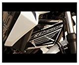 "cache radiateur / grille de radiateur inox poli Honda CB650F 2014>2017 design ""Wing"" + grillage anti gravillon noir"