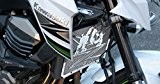 cache radiateur / grille de radiateur Kawasaki Z800 2012>16 design «Bulldog»+ grillage anti gravillon blanc