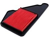 Filtre à air pour Honda FMX 650, FX650, SLR 650(RD12, RD09)