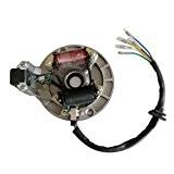 GOOFIT 2-coil Magneto stator pour 50 cc 70 cc 90 cc 110 cc 125 cc Kick Start ATV dirt bike ...