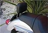 GZM Dossier pour passager arrière / Sissy Bar à démontage rapide pour Harley Davidson Sportster