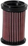 K&N DU-6908 Filtre à air de remplacement