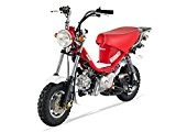 Mini Moto - BUBBLY 125 Semi-Auto - Rouge - SKYTEAM