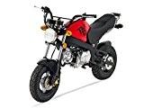 Mini Moto - PBR 125 - Rouge - SKYTEAM