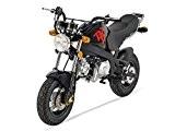 Mini Moto - PBR 50 - Noir - SKYTEAM