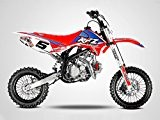 Moto Dirt Bike 140cc - Pit Bike APOLLO RFZ OPEN 140